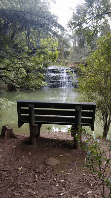 Great Auckland Walk Albany Trig Track Waterfall