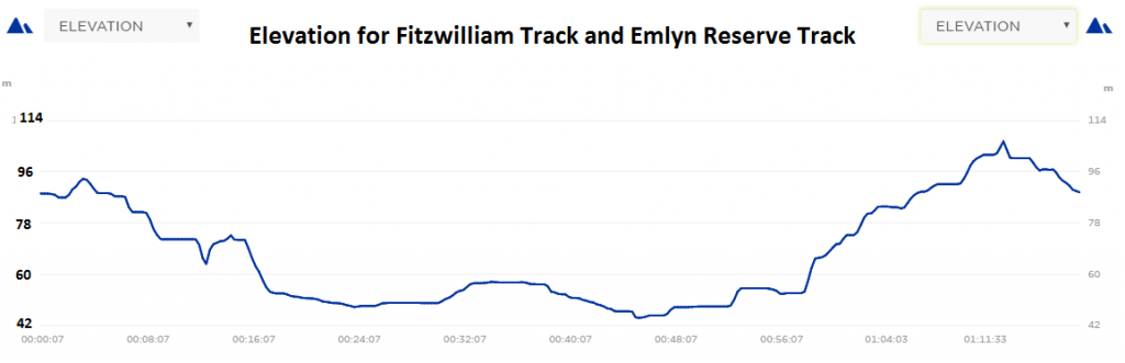 Fitzwilliam and Emlyn Elevation