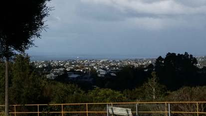Great Auckland Views