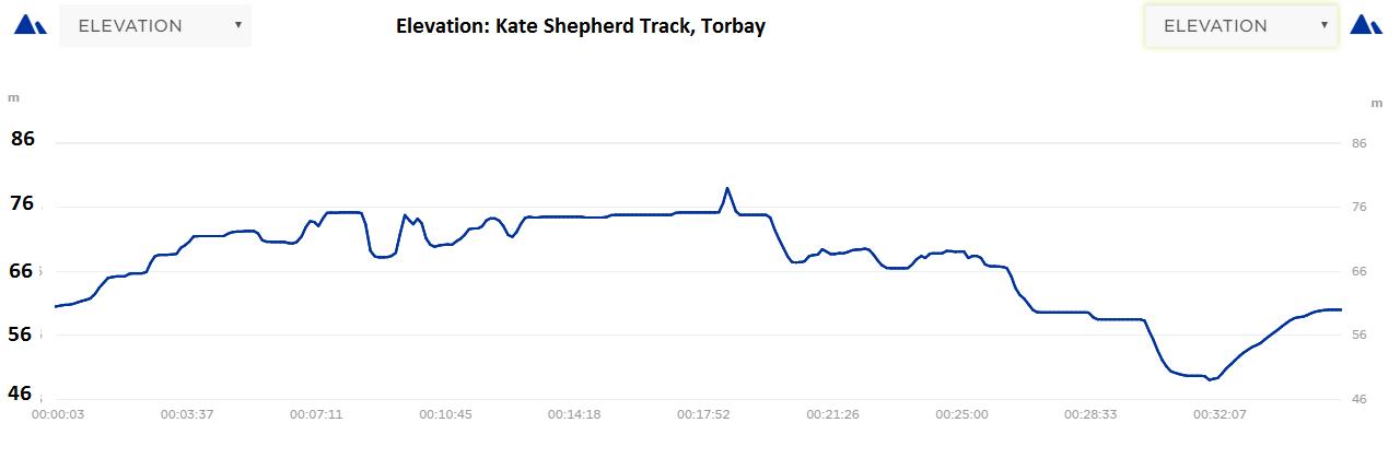 Kate Shepherd Elevation