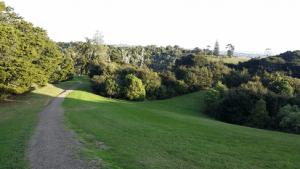 Pt view path to bush