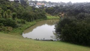 Stredwick Track Lower Pond