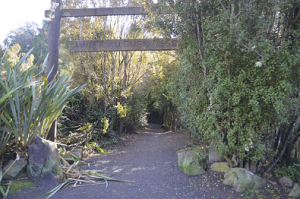Awaruku Bush Reserve Awaruku Road Entrance